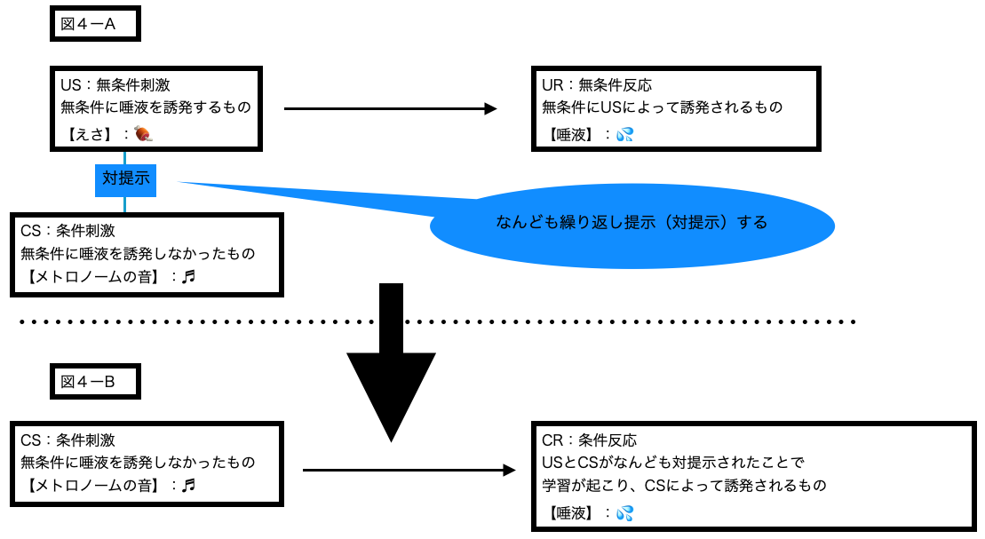 (ABA自閉症療育の基礎6)レスポンデント条件付けの原理2